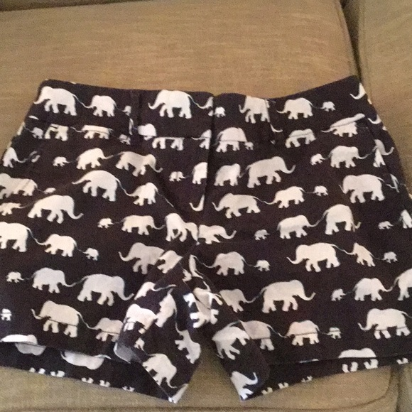 LOFT Pants - Loft Riviera Shorts